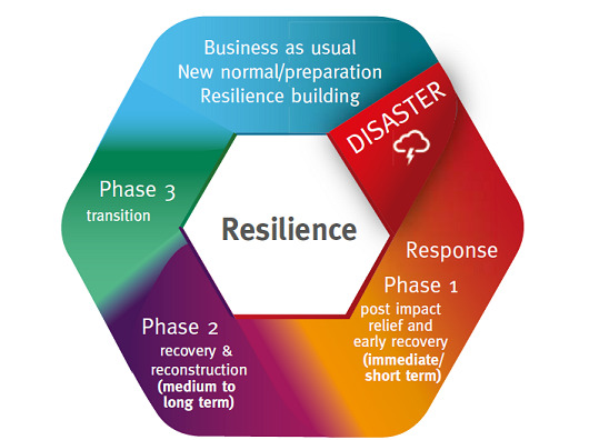 Phases of Recovery Image