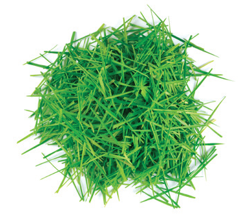 lawn clippings 2
